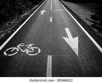 Black and white of While bicycle sign and symbol on bicycle lane or asphalt road