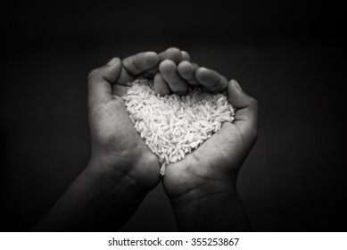 Black and white,Hands holding rice.selective focus and shallow depth of field.