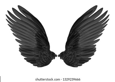 black wings of bird on white background
