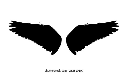 Black wings isolate white background.