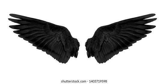 black wings isolated on white background