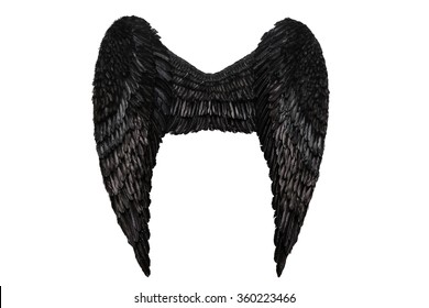Black wings on white