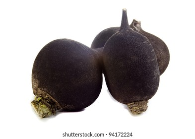 black winter radish on a bright background