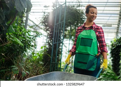 Black woman wiht wheelbarrow in a botanical garden