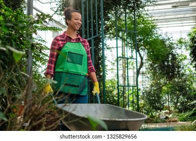 Black woman wiht wheelbarrow in a botanical garden