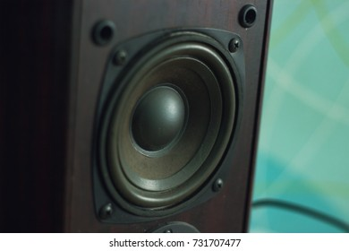 Black Woofer at interior of the room