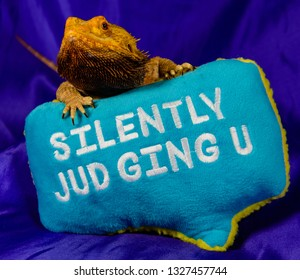 Blackbearding Dragon Judgment