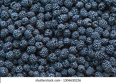 Blackberries background.Close up, top view