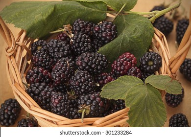 Blackberries in a basket on wooden background Healthy food. Diet concept.