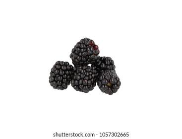 Blackberries bunch on white background