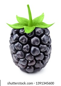 Blackberries close-up isolated on a white background. Blackberry Clipping Path