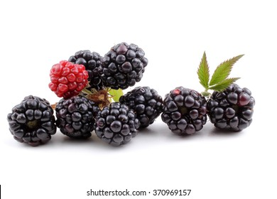 Blackberries and cluster of blackberries