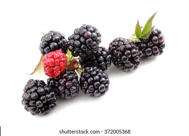 Blackberries and cluster
