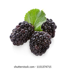blackberries fruit and leaf on white background healthy food isolated