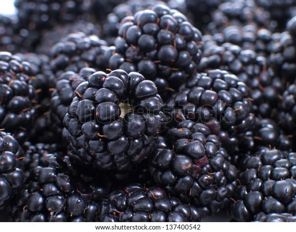 Blackberries - group of object