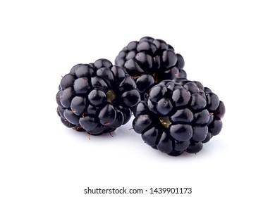 Blackberries  Isolated on White Background. Macro.