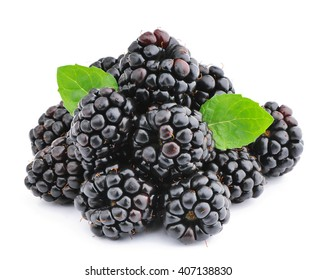 Blackberries isolated on white background.