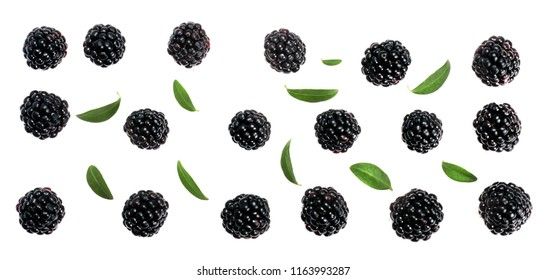 Blackberries isolated on white, top view.