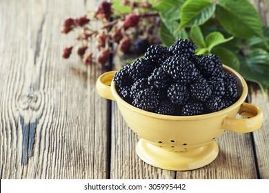 Blackberries in a vintage colander on wooden background