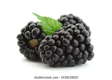 Blackberry fruit closeup isolated on white background