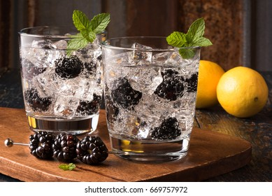 Blackberry Gin and Tonic Beverages