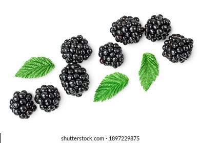 blackberry isolated on a white background closeup. Clipping path and full depth of field. Top view. Flat lay