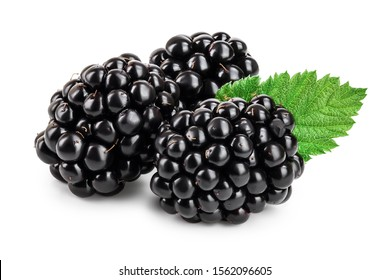 blackberry with leaf isolated on a white background closeup