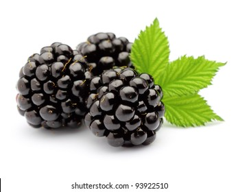 Blackberry with leaves