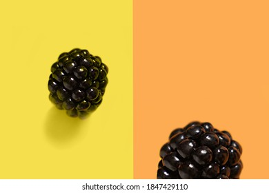 Blackberry on an illuminating yellow background next to the orange background with big Blackberry . High quality photo