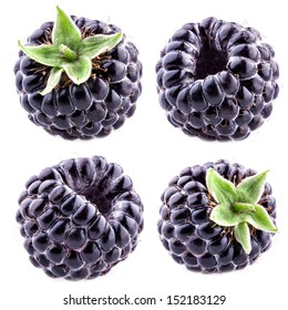 Blackberry on white background. Collection