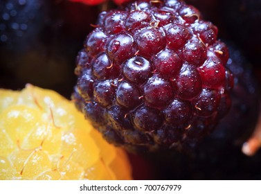 BlackBerry, raspberry and currant macro photo