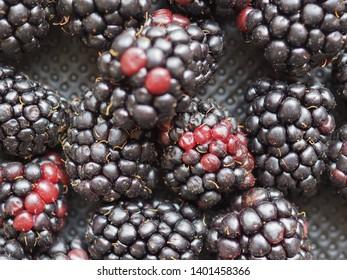 blackberry (Rubus fruticosus) fruit vegetarian food background