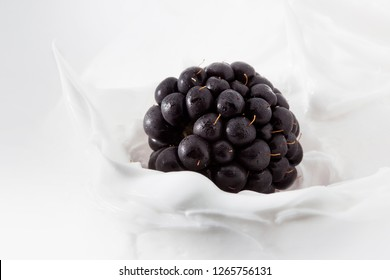 BlackBerry yogurt. BlackBerry berry in milk or yogurt. Splash, close-up. Cottage cheese berry dessert concept