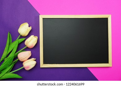blackboard and bunch of tulip flower on pink and purple background flat lay