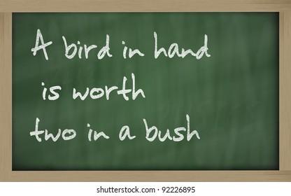 """Blackboard writings """" A bird in hand is worth two in a bush """""""