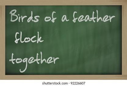"""Blackboard writings """" Birds of a feather flock together """""""