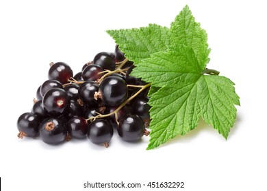 Blackcurrant bunch (Ribes Nigrum) with leaves. Clipping path, shadow separated, infinite depth of filed