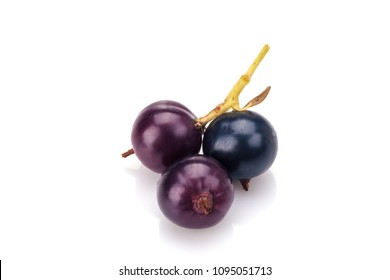 Blackcurrant in closeup isolated on white background.