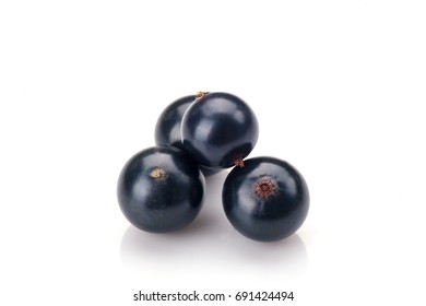 Blackcurrant isolated on white background