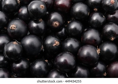 Blackcurrant wallpaper