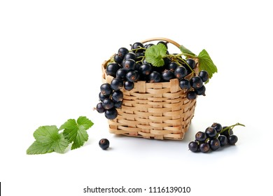 Blackcurrants in and beside a small wicker basket on white background.