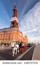 Blackpool, England, UK - August 1, 2015: A couple drive a horse and carriage along the seafront at Blackpool Promenade, under the iconic Blackpool Tower.
