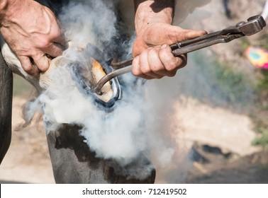 Blacksmith Creating Smoke From Horse Shoe Fitting
