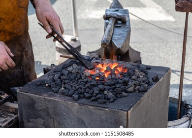 A blacksmith heating the metal stirrup hook he is making in a red hot glowing blacksmiths fire  fire next to his anvil.