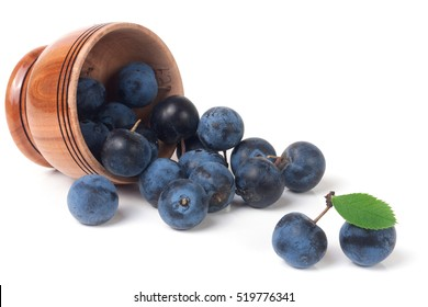 blackthorn berries in a wooden bowl isolated on white background