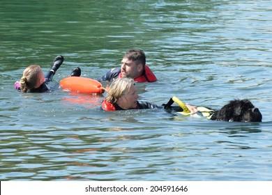 Blackwater Country Fare MALDON ESSEX UK 22 June 2014:  Newfoundland Dog in Mock Rescue