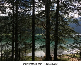 Blake lake, forest and mountains at National park Durmitor