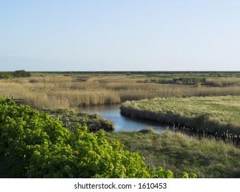 Blakeney saltmarshes, North Norfolk UK