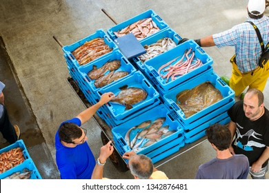 Blanes, Spain - 31 may, 2018: Blue plastic containers with catch of sea fish, squid, clams, sea delicacies, seafood. Fish auction for wholesalers restaurants. Hangar for storage and sale of seafood