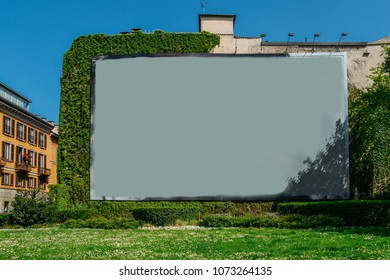 Blank advertisement space on wall next to grass and vines